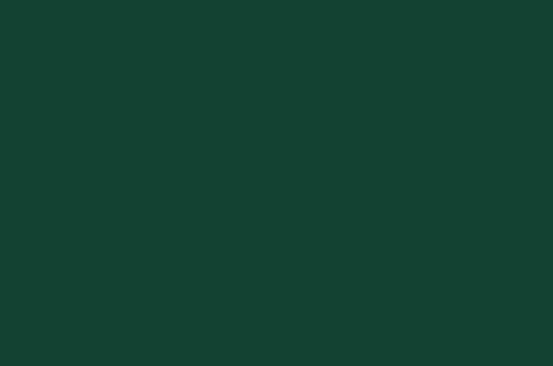 P035 - Moss Green - RAL 6005