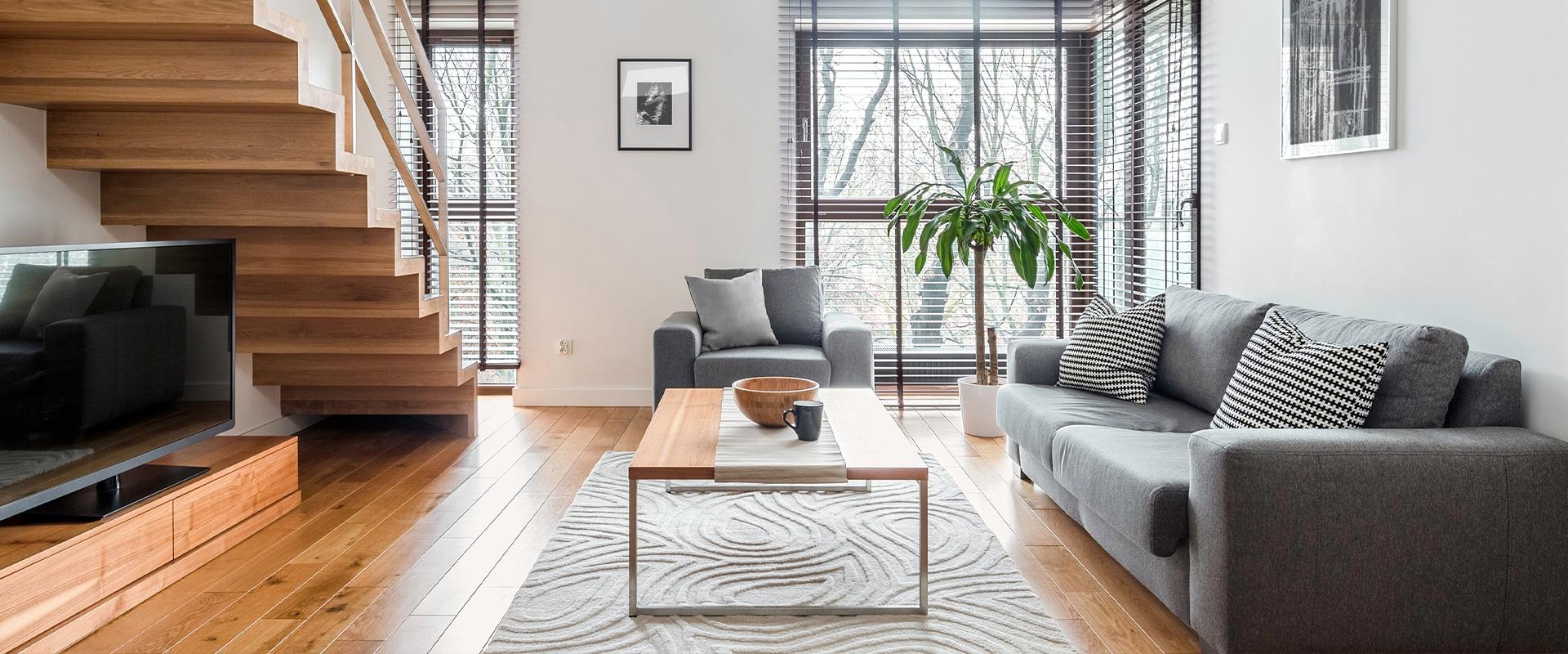 Modern style (living room)